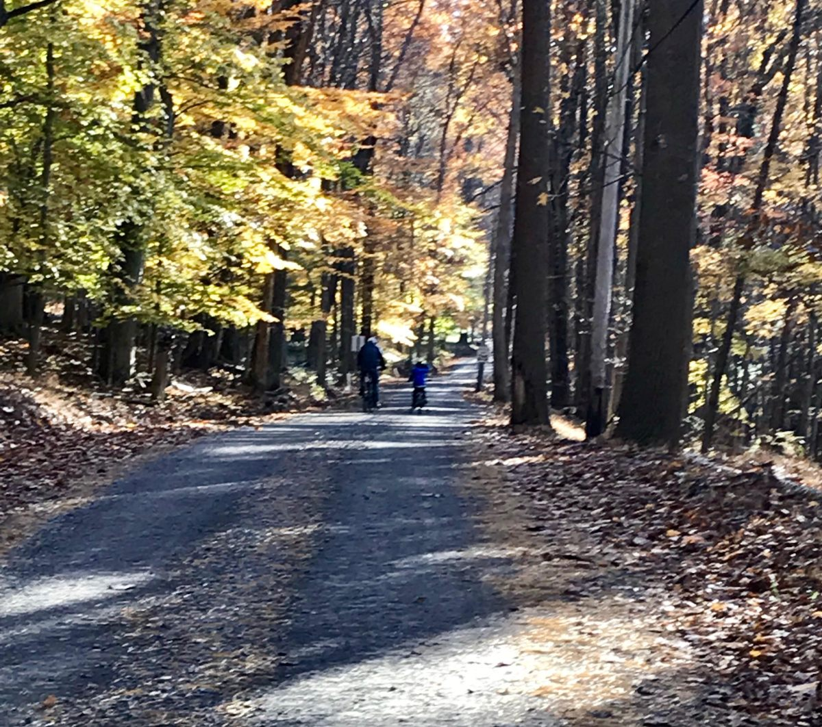 A little boy and a baby enjoying Carversville, PA on a brisk Autumn Sunday afternoon!
