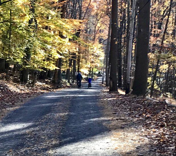 A little boy and a baby enjoying Carversville, PA on a brisk Autumn Sundayafternoon!